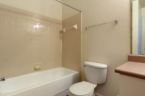 Bathroom with Mauve Counter and Beige Tiled Shower and White Bathtub