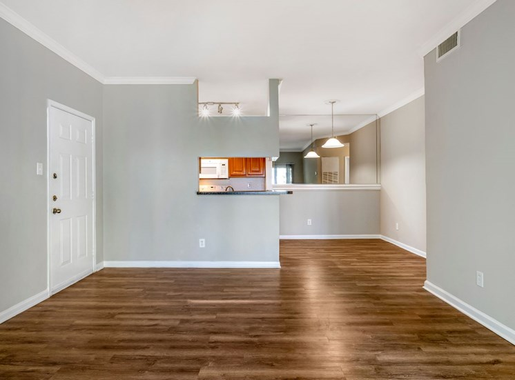 Living room with hard wood style flooring, light gray wall, and view of kitchen in the background