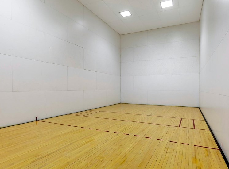Large indoor sports amenity with white walls, hardwood, sports lined floor, and high ceilings.