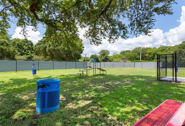 Dog park with obstacle course and green grass