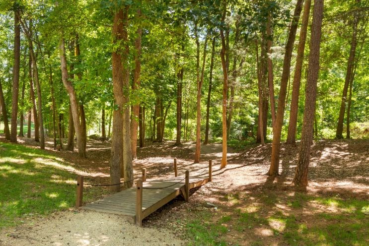 Walking Trail with Small Wooden Bridge Shaded by Trees
