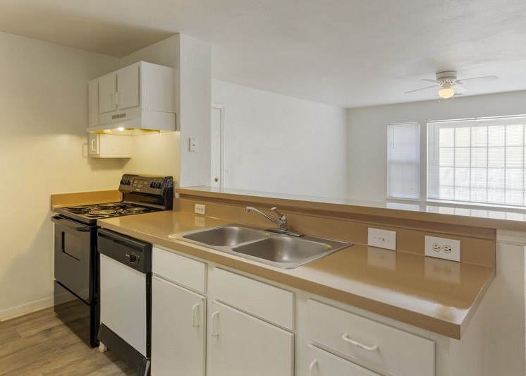 Fully equipped kitchen with double basin sink and black appliances