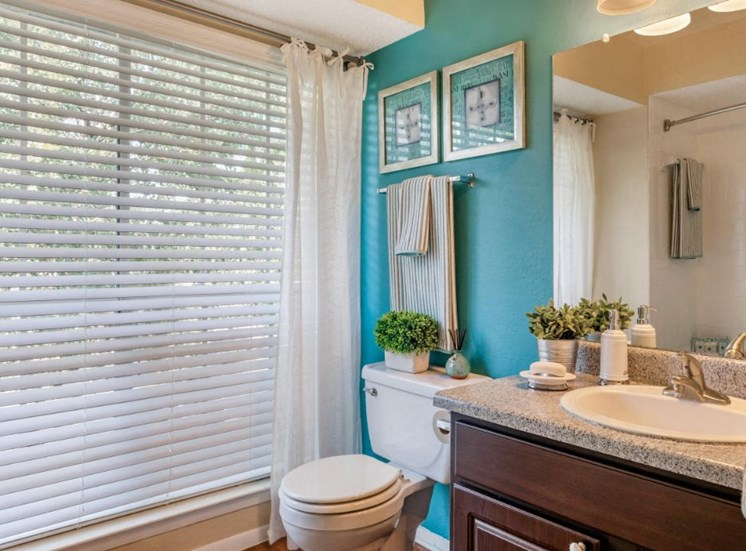 Bathroom with Accent Wall and Window