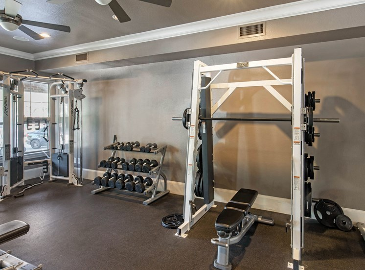 Fitness center with squat rack and free weights