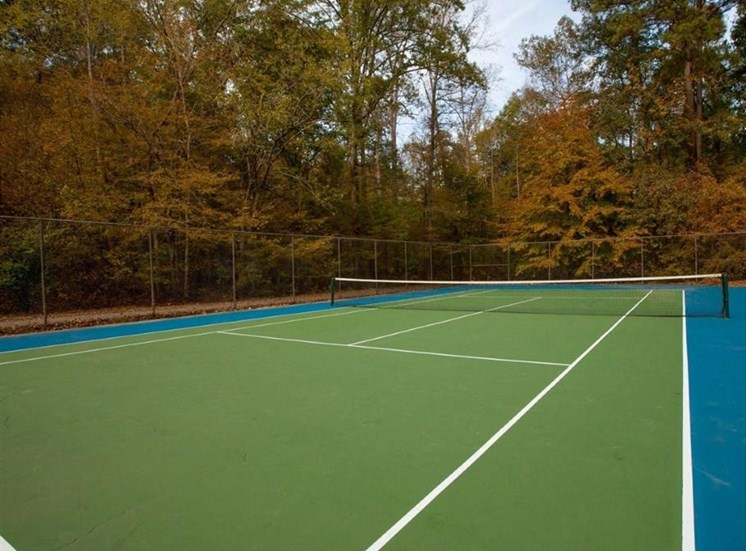 Fenced in Tennis Courts Surrounded by Trees