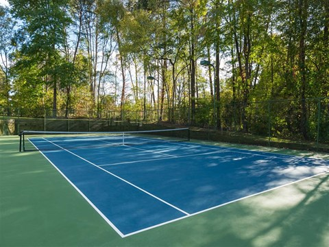 Fenced in Shaded Tennis Courts Surrounded by Tall Trees