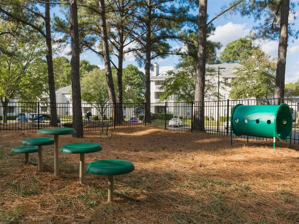 Fenced in Dog Park with Agility Equipment Shaded by Tall Trees with Parking Lot and Building Exterior in the Background