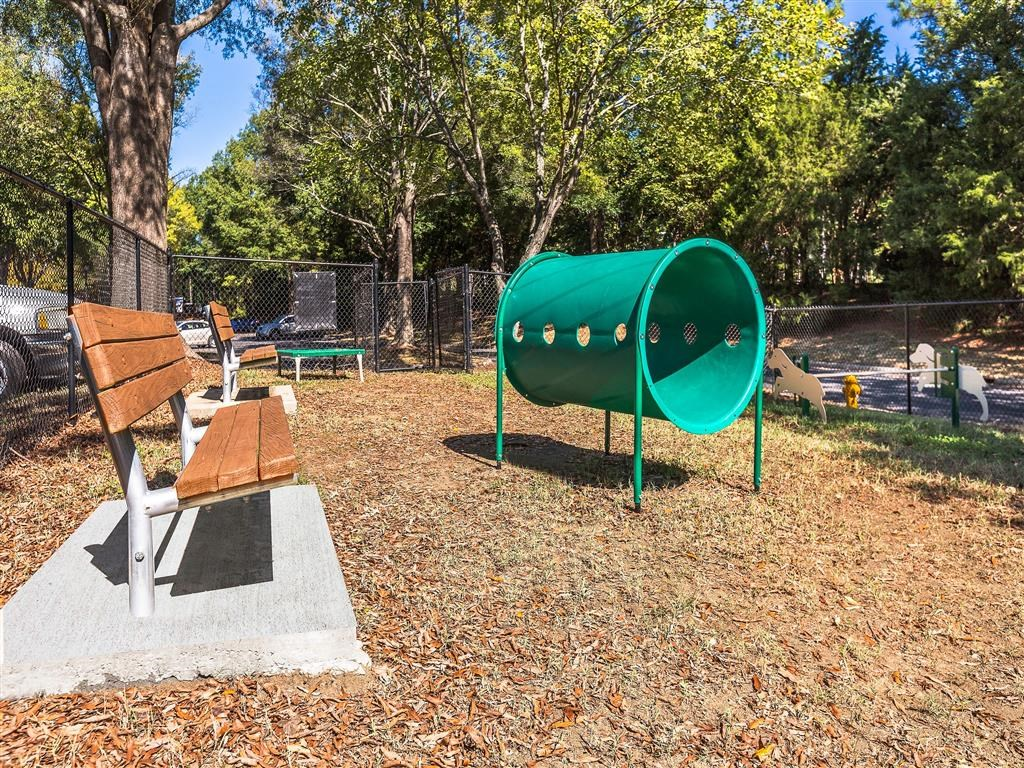 Dog Park with Agility Equipment