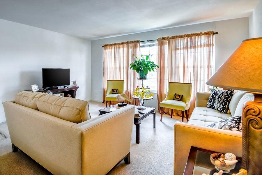 Carpeted Model Living Room with Decorations Chairs Couches and TV on Entertainment  Cabinet