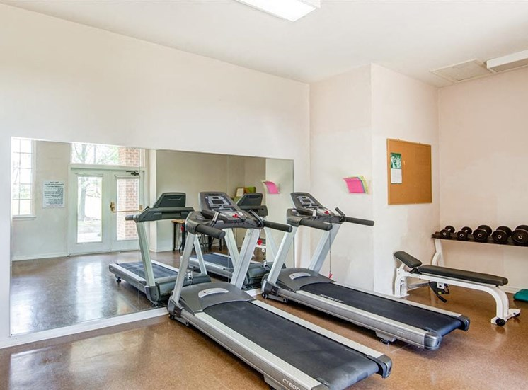 Bright Fitness Center with Free Weights and 2 Treadmills Against Mirrored Wall