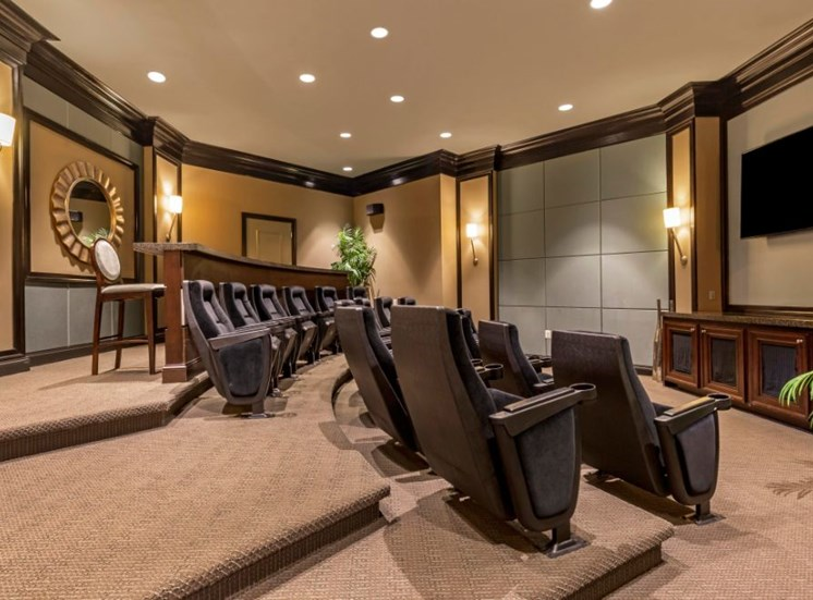Theatre Room with Brown Theatre Chairs and Mounted TV
