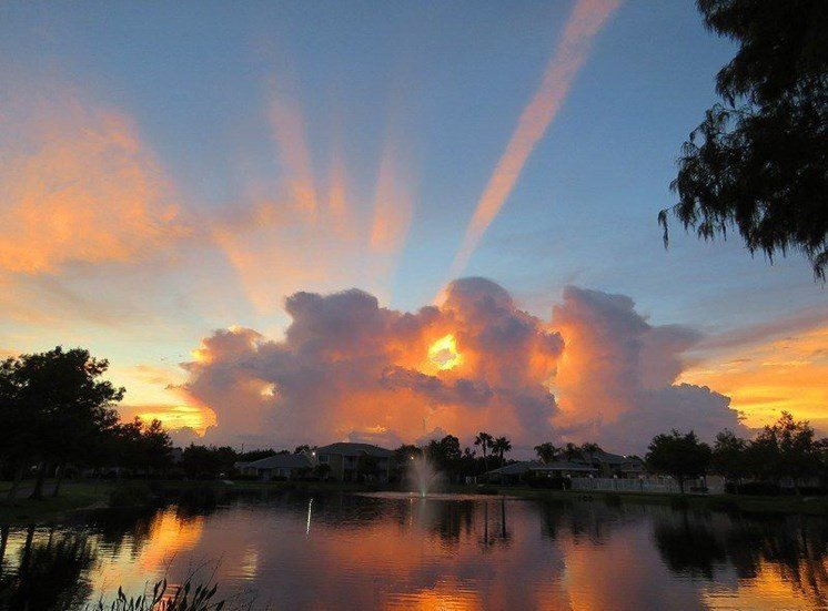 View Over The Lake At Sunset at River Park Place Apartments, Vero Beach