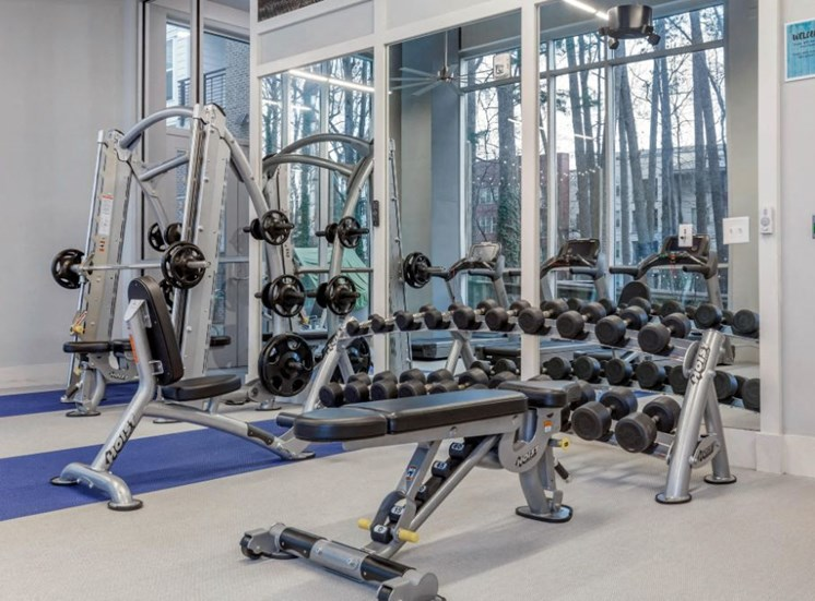 Fitness Center with Exercise Equipment and Free Weights Next Wall of Windows