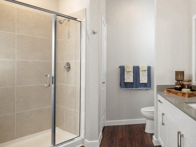 Modern style bathroom, hardwood style flooring, stand up shower, white