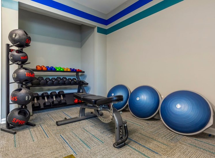 Fitness Center Free Weight Dumbells