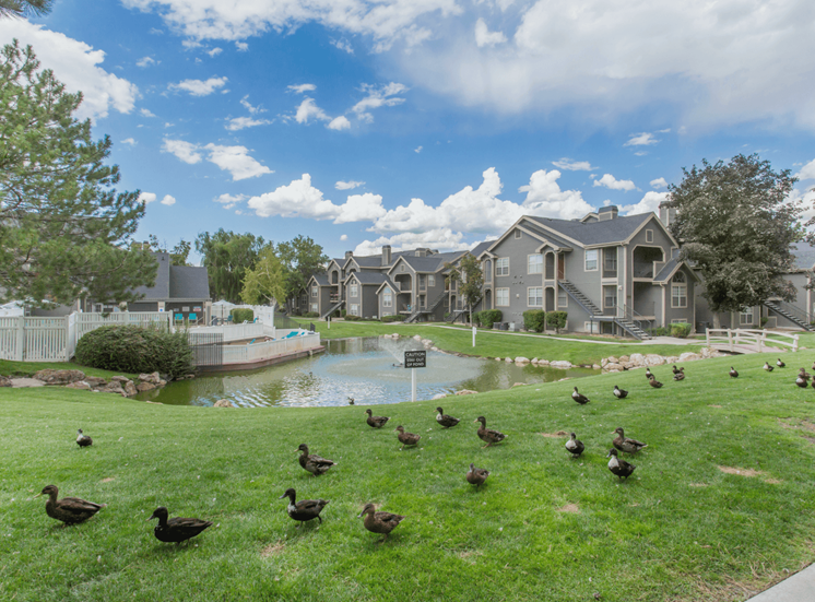 Lake view with water feature, native landscaping, and apartment exterior in the background