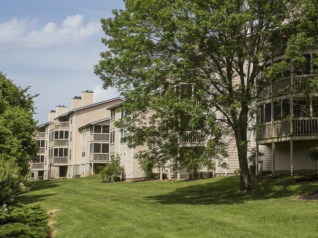 Green Area | Landmark at Lyncrest Reserve Apartment Homes Nashville, TN