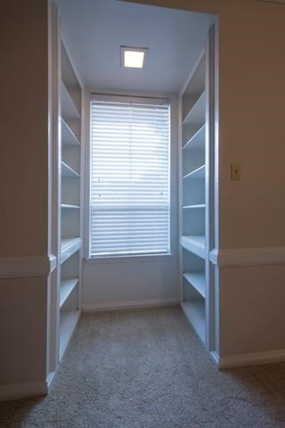 Built-In Shelves/Closet Space