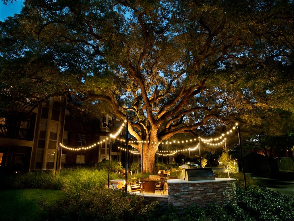 Outdoor Social Area with Grills under Mature Oak Trees