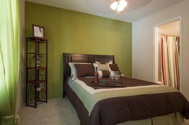 Bedroom with En-Suite Bathroom, Green Accent wall, BEd and Shelf