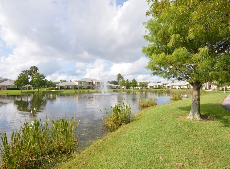 Waterfront View With Trees at River Park Place Apartments, Vero Beach, 32962