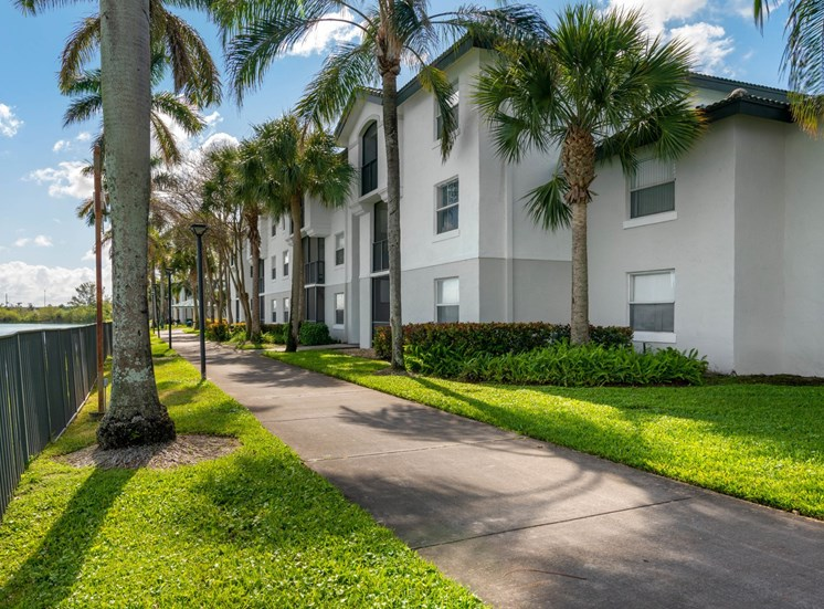 Sidewalk Shaded by Palm Trees Between Fence and Apartment Buildings