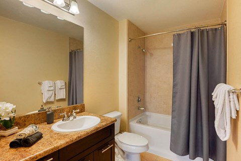 Bathroom with garden style bath tub, dark gray shower curtain, vanity lights, and spacious countertop