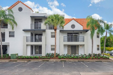 Building Exterior with parking lot and palm trees