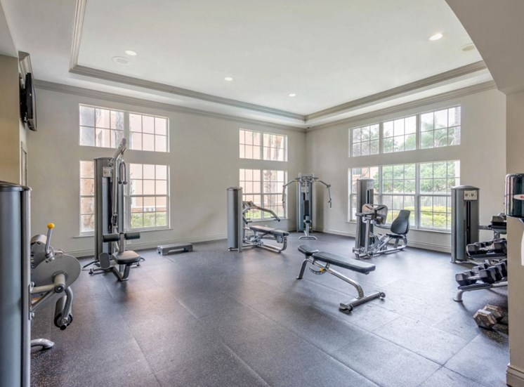 Fitness center with free weight bench and strength equipment
