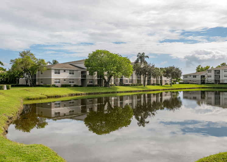 Overlooking the pond with a water feature and building exteriors in the background surrounded by palm trees