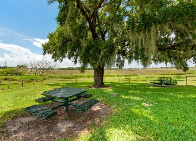 Picnic area with picnic table, mature trees and large grass areas