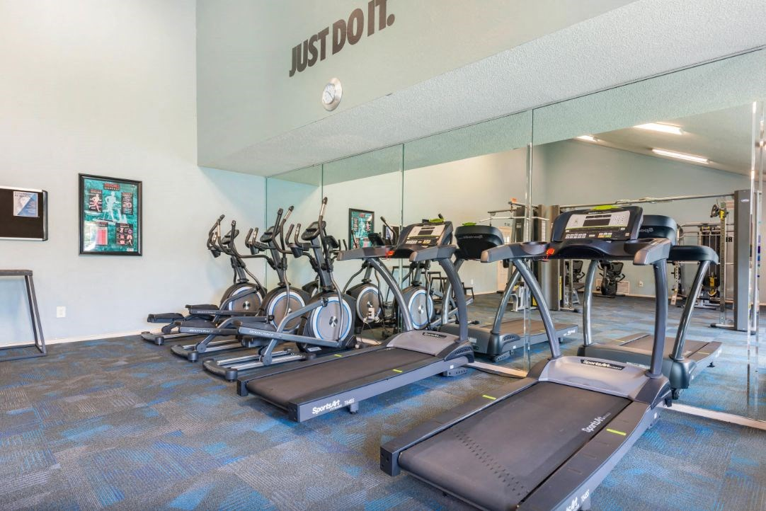 Fitness Center Cardio Equipment