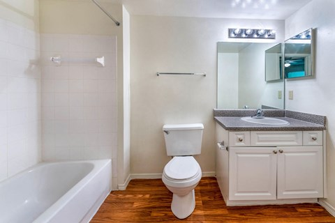 Bathroom with hardwood style flooring, white vanity with dark grey counter and mirrored medicine cabinet