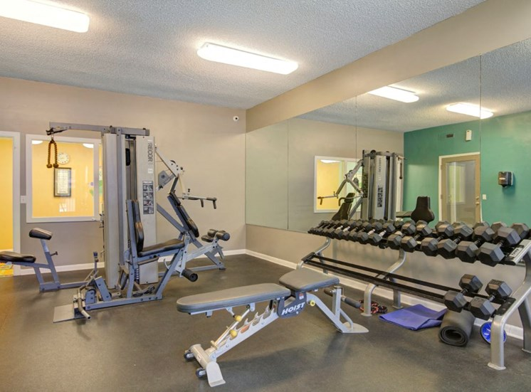Cardio and Fitness Center with Exercise Equipment  and Free Weights in Front of Mirror Accent Wall