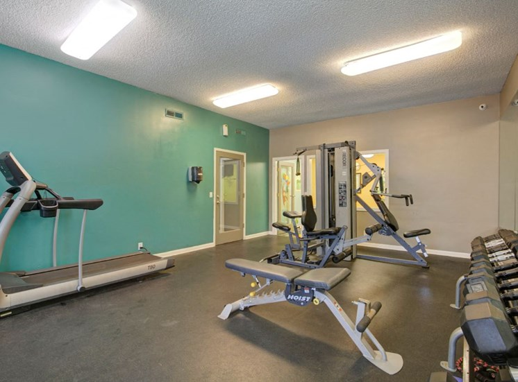 Cardio and Fitness Center with Exercise Equipment  and Free Weights