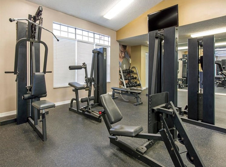 Fitness Center with Weight Machines and Free Weights and Mirror Accent Wall
