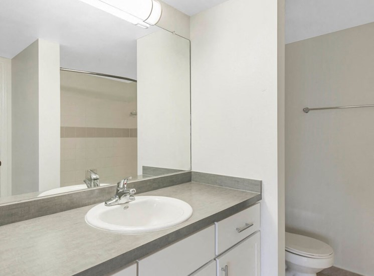 Bathroom with Grey Counters and White Cabinets