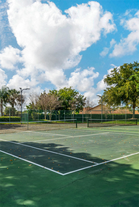 Tennis court surrounded by trees