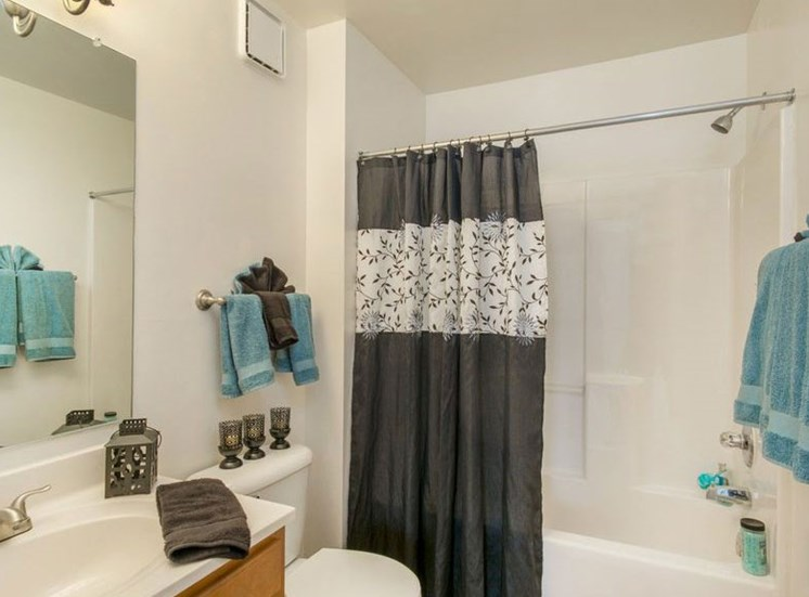 Bathroom With Bathtub at Bridgeport Apartments, Hampton