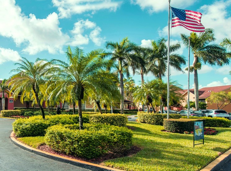 Parkinglot Media with American Flag Bushes and Palm Trees