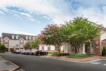 13025 Elm Tree Drive 1-2 Beds Apartment for Rent Photo Gallery 1