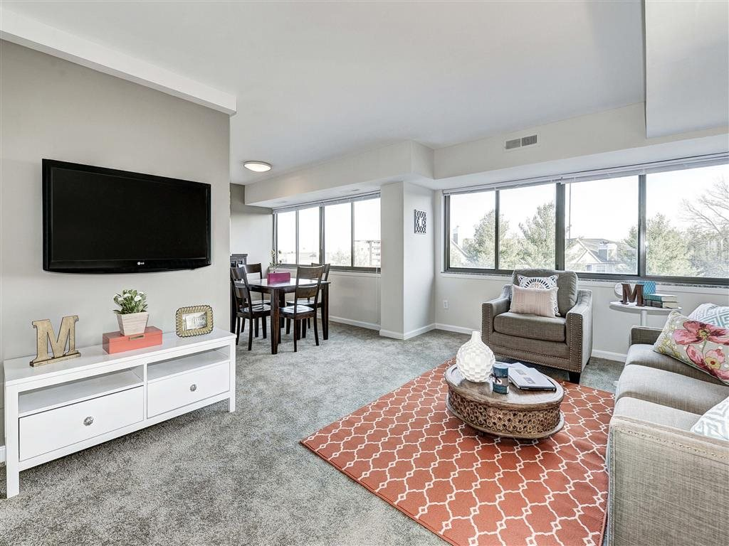 Living Room With Television at The Mark Apartments, Virginia