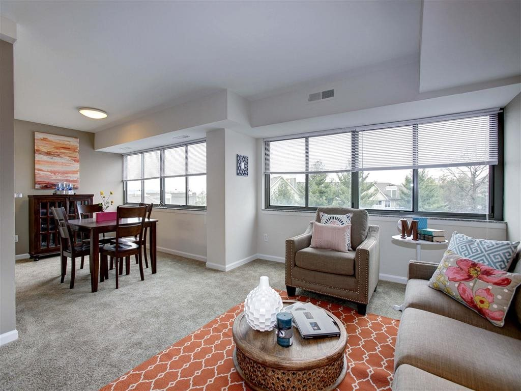Living Space With Plenty of Natural Light at The Mark Apartments, Alexandria, VA, 22304