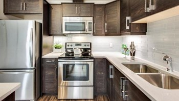 11189 Ellerslie Rd SW 1-3 Beds Apartment for Rent Photo Gallery 1