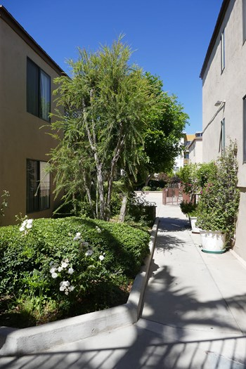 21041 Parthenia Street Studio Apartment for Rent Photo Gallery 1