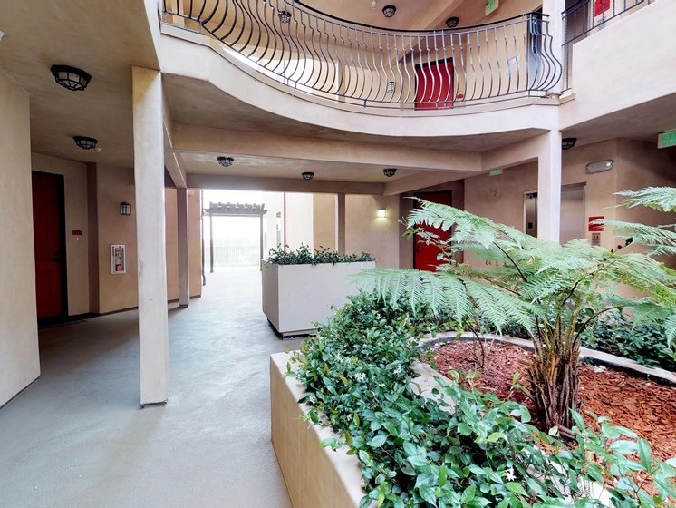 Vista Paradiso courtyard 3