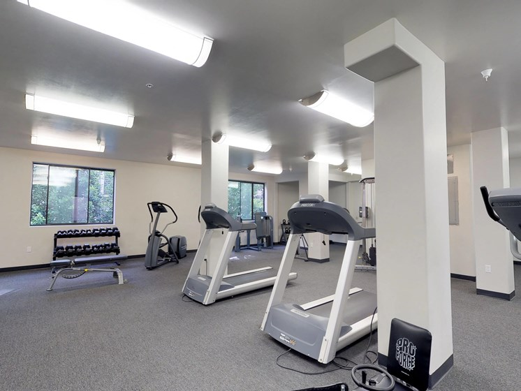 Vista Paradiso fitness center