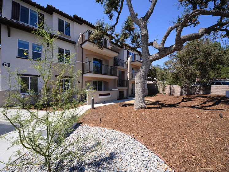 Yolo Apartments Exterior Building Walkway and Tree Planter