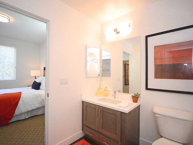 Yolo Apartments Master Bathroom with Spacious Closet