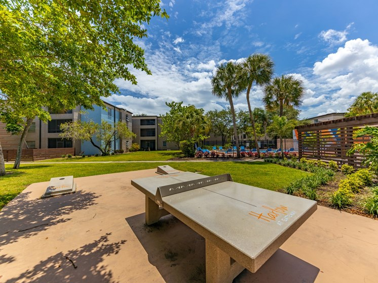 Outdoor Play Area at Harlow at Gateway, St. Petersburg, Florida